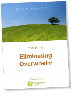 5 Steps to Eliminating Overwhelm: Special Worksheet